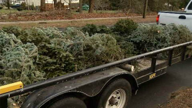 South Windsor Park and Rec Department deliver Christmas trees to those in need (WFSB)