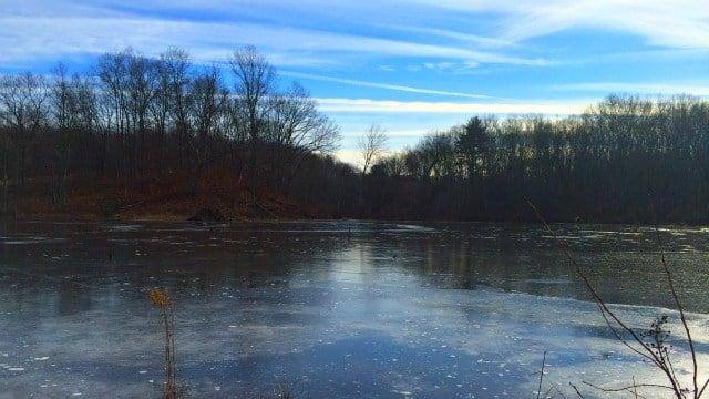 Beaver Pond at Trail Wood