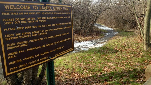 Two men arrested after inappropriate activity on trails at the Laurel Marsh Hiking Trial in Manchester. (WFSB)