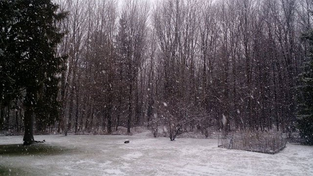 It wouldn't be winter in the #iceboxofct if a rain storm didn't finish up with heavy snow! (Norfolk CT FDEMS PIO)