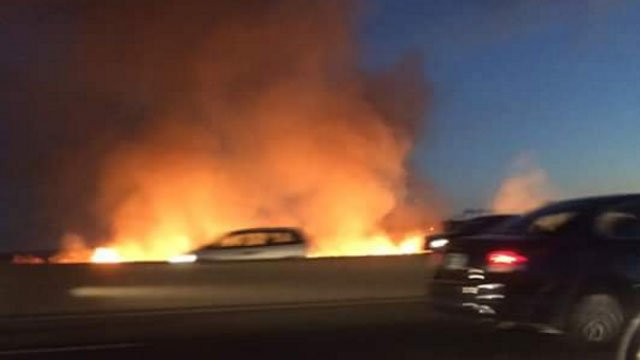 Brush fire reported on I-91 in New Haven. ( Debbie Cuccaro)