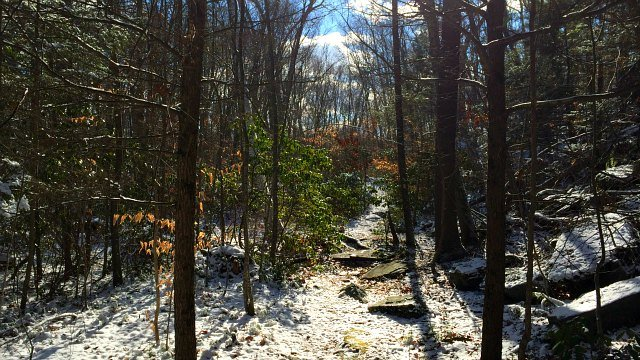 Trail brings hikers into an impressive ravine.