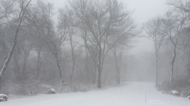 WFSB Anchor Eric Parker captures the beauty of Winter Storm Anna in Old Lyme