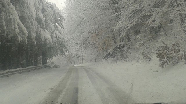 Country Road in Wallingford Tuesday morning. (iWitness photo)