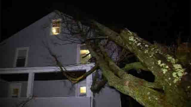 Heavy winds are being blamed for knocking a tree onto a home in Ellington (WFSB)