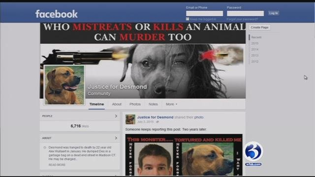 The new law being put forth is called Desmond's Law, named after a pit bull who was brutally killed by its owner. (Facebook)