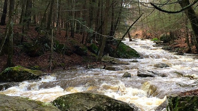 Small brook turned roaring river after storm