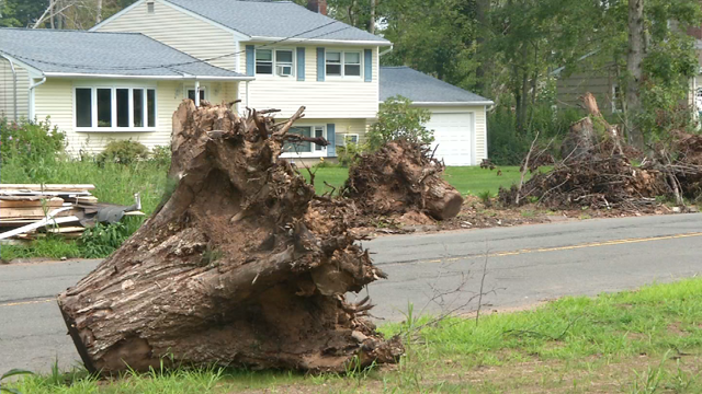Three months after an EF1 tornado hit Hamden, residents are still cleaning up (WFSB)